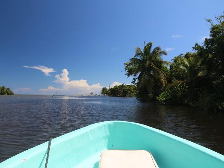 monkey river boatride