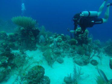 scuba diver with go pro