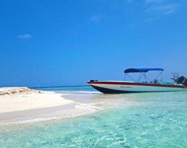 placencia wildside boat